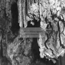 Gruta de Warari, estalactitas y estalagmitas
